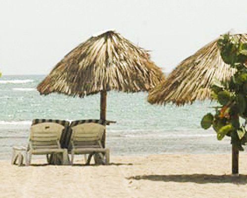View of chaise lounge chairs and thatched sunshades facing the beach.