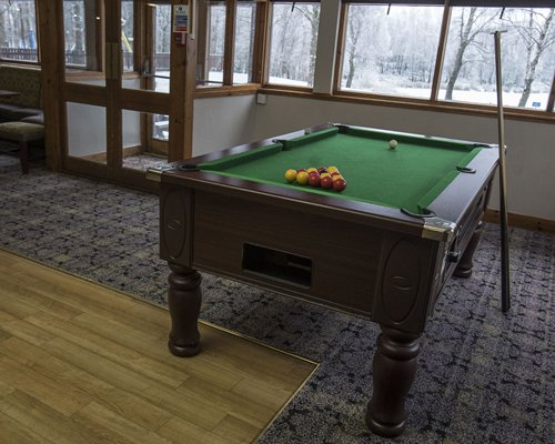 An indoor recreation room with a pool table alongside snow covered wooded area.