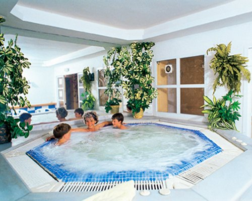 An indoor hot tub with potted plants.