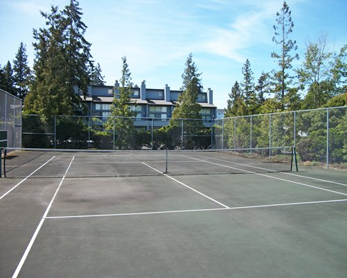 An outdoor tennis court surrounded by woods.