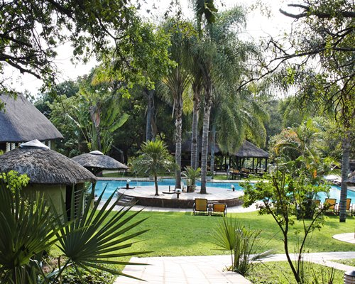 A scenic outdoor swimming pool with thatched sunshades and the trees.