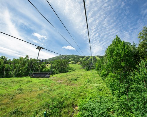 View of cable car surrounded by wooded area.