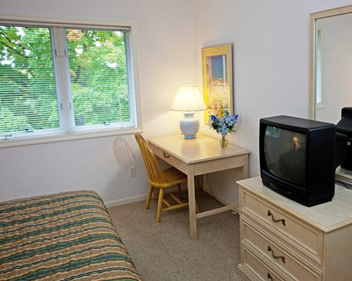 A furnished bedroom with a television and outside view.