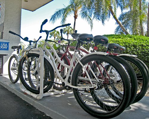 View of bikes at Four Winds of Longboat Key.