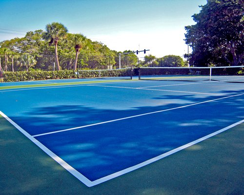 Outdoor recreation area with tennis courts surrounded by wooded area.