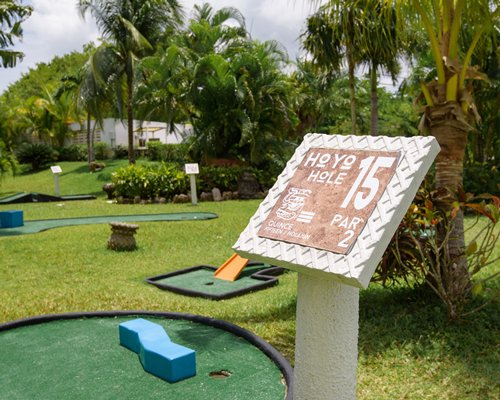 Outdoor swimming pool with chaise lounge chairs thatched sunshade and palm trees alongside the ocean.