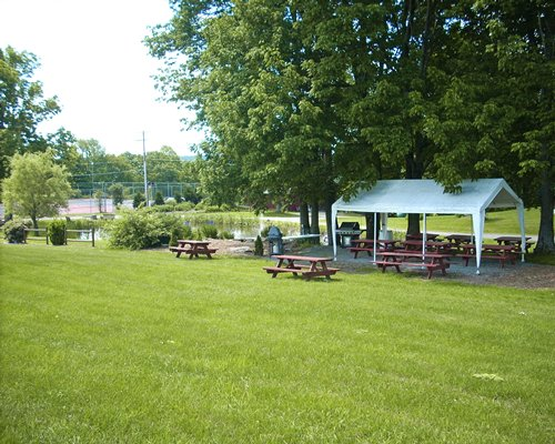 An outdoor picnic area with barbecue grill and sunshade alongside a water view.