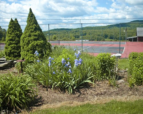 A scenic view of an outdoor tennis court.