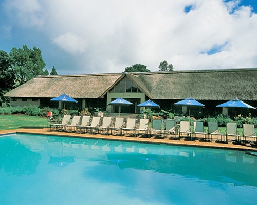 An outdoor swimming pool with chaise lounge chairs and thatched sunshades.
