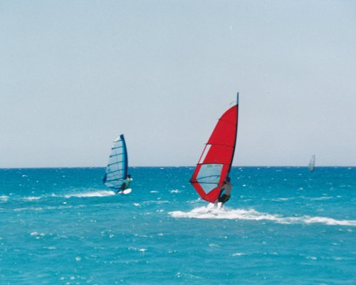 View of people wind surfing at the beach.