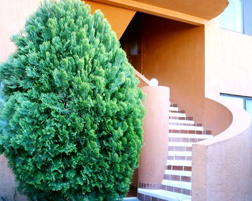 Scenic exterior view of a unit with stairway.