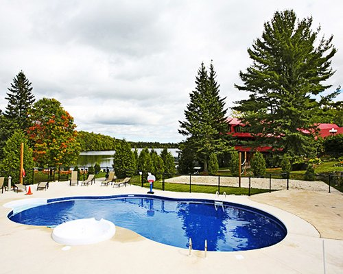An outdoor swimming pool with chaise lounge chairs surrounded by woods.