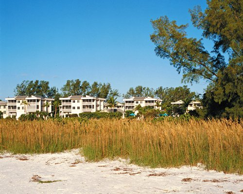 A beach view of the Shell Island Beach Club Resort.
