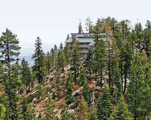 An exterior view of the resort unit surrounded by pine trees.