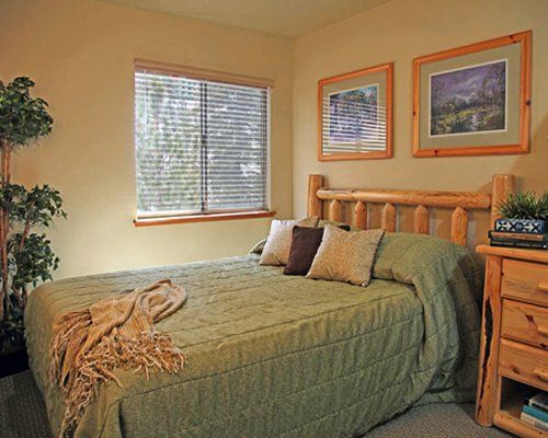 A well furnished bedroom with a dresser and an outside view.