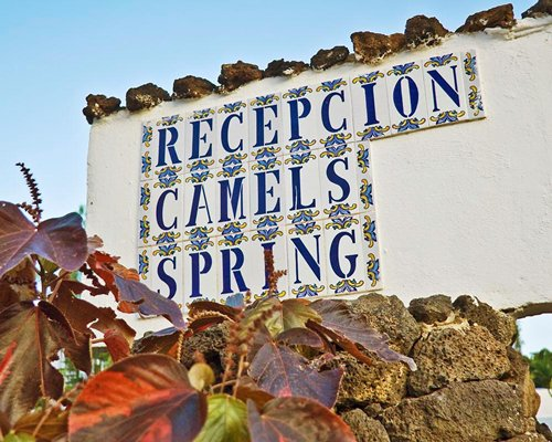 Signboard of Recepcion Camels Spring.