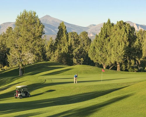 Golf course with a golf cart surrounded by wooded area and mountains.