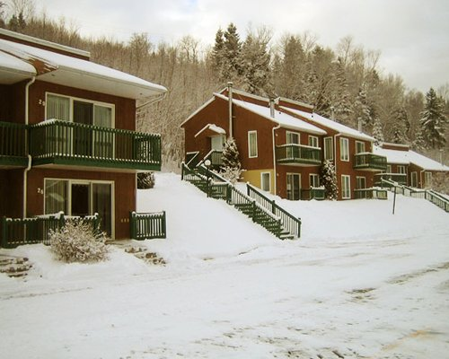 Exterior view of the Chalets Sur Le Fjord resort alongside pine trees covered in snow.