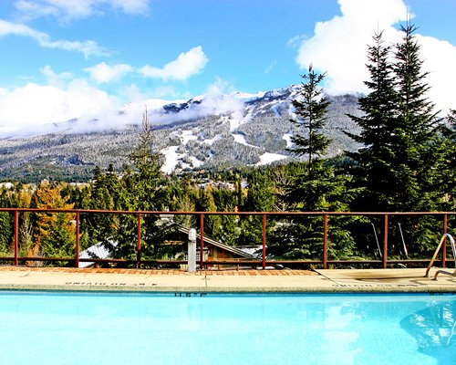An outdoor swimming pool alongside pine trees and mountains.