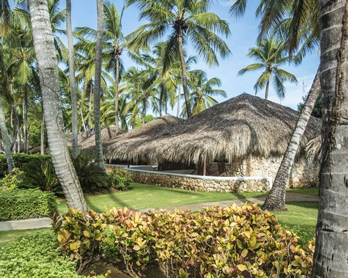 Scenic exterior view of the resort surrounded by coconut trees.
