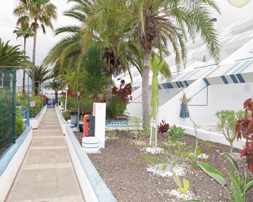 Scenic pathway to units at Puerto Colon Club.