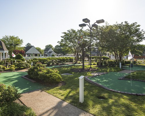 A golf course set with putting green .