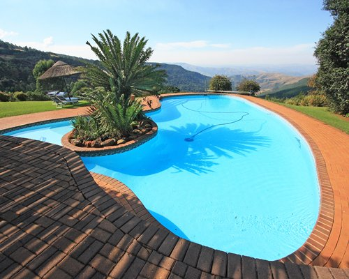 Large outdoor swimming pool with chaise lounge chairs thatched sunshade and palm trees.