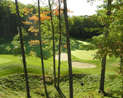 A scenic outdoor golf course surrounded by wooded area.