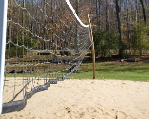 Outdoor recreation area with volleyball net surrounded by wooded area.