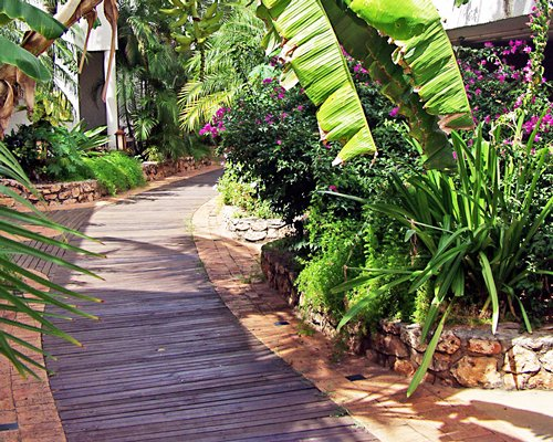 A pathway of Sapphire Beach Club resort.