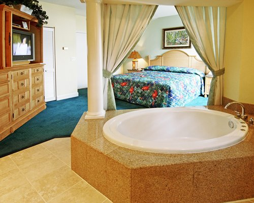 A well furnished bedroom with a television and a hot tub.
