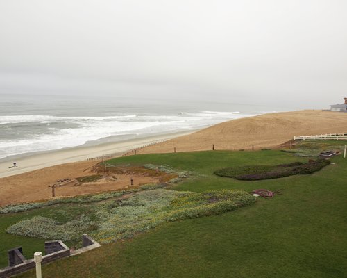 An aerial view of the lawn alongside the beach.