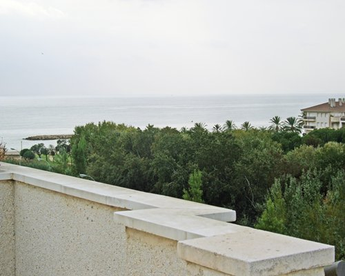 View of wooded area alongside the sea from the terrace.