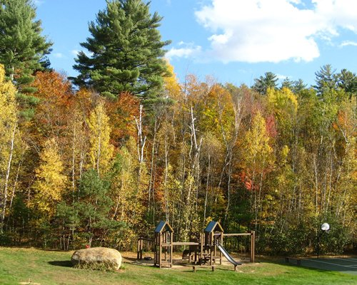 An outdoor playscape surrounded by wooded area.