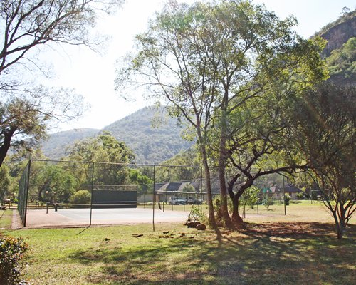 Outdoor tennis court surrounded by wooded area.