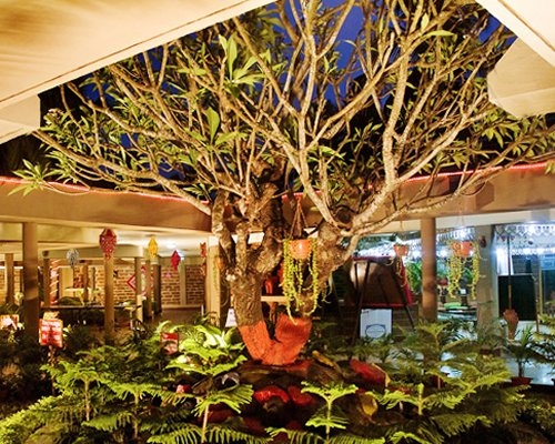 An indoor plantation of the Toshali Sands resort.