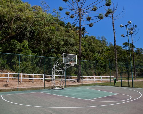 An outdoor volleyball court alongside the wooded area.