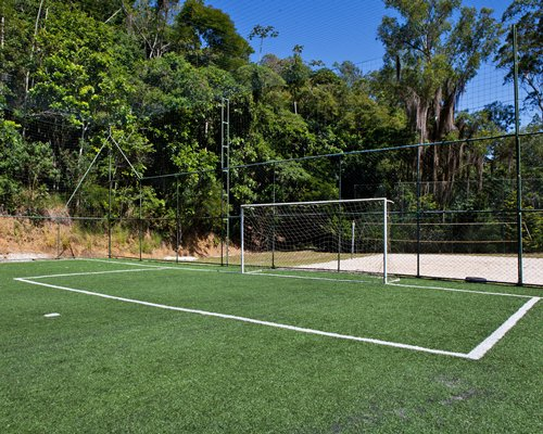 Football court surrounded by wooded area.