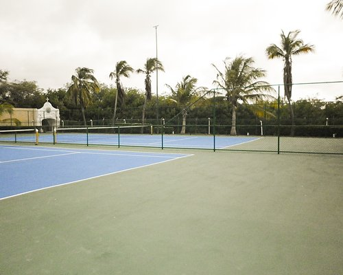 An outdoor tennis courts alongside the trees.