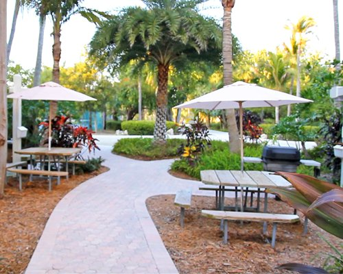 An outdoor recreational area with a barbecue grill.