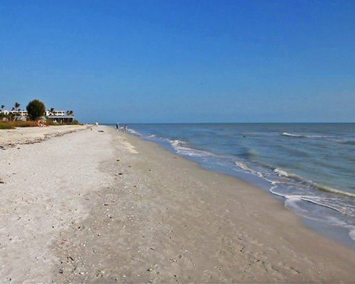 The beach along the Gulf of Mexico.