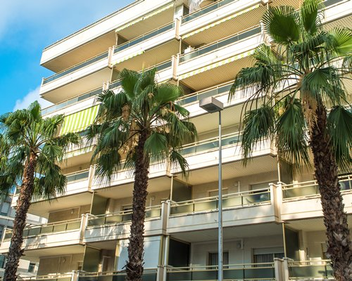 Exterior view of multiple unit balconies at Ona Jardines Paraisol with palm trees.