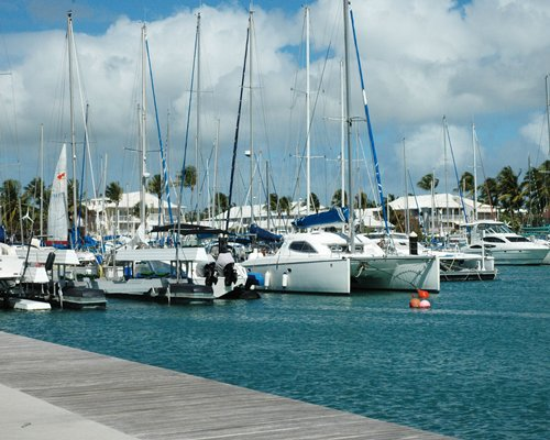 A marina filled with sailboats.