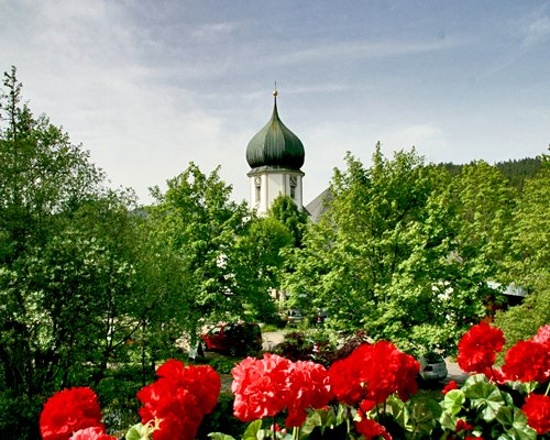 A distant view of an onion dome seen through flowers and trees.