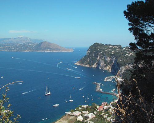 An aerial view of the sea with multiple sailboats.
