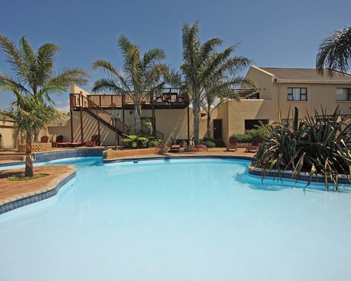 An outdoor swimming pool with palm trees.