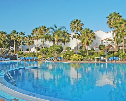 Outdoor swimming pool chaise lounge chairs thatched sunshades and palm trees.