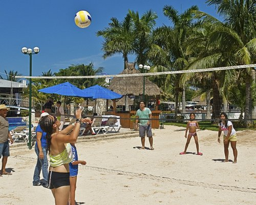 View of people playing volley ball at outdoor recreation area alongside sunshades and palm trees.