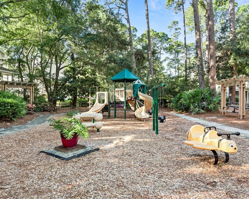 A view of kids playscape surrounded by wooded area.