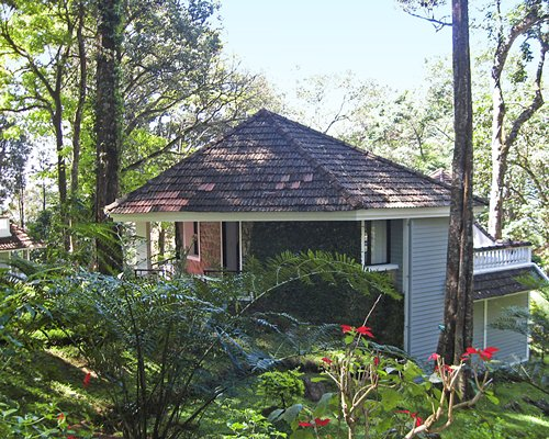 Exterior view of a unit at The Tall Trees surrounded by wooded area.